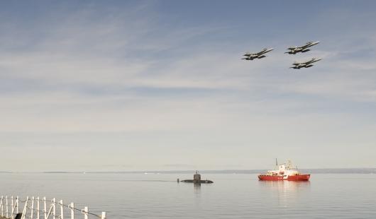 Arctic fighters